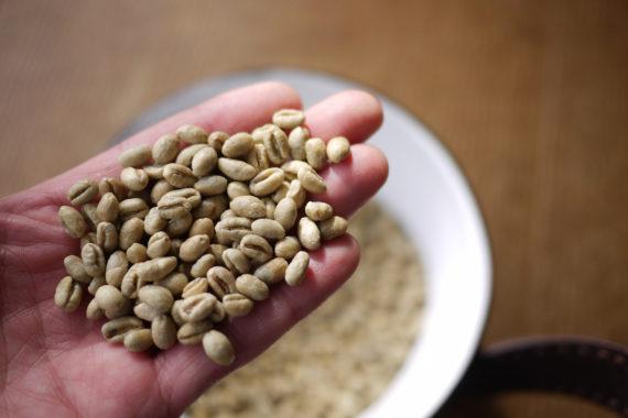 ピーベリーの生豆